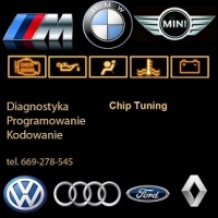 ChipTuning EGR DPF FAP Elektronika Diagnostyka Mechanika