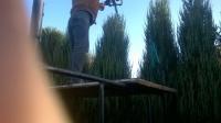 uslugi ogrodnicze , wertykulacje trawnikow , opryski