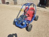 Buggy 50cc