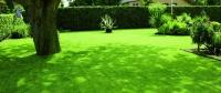 Koszenie trawników
