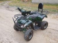Quad ATV 125