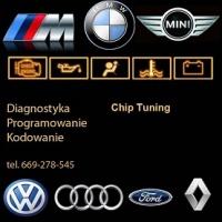 ChipTuning Hamownia  Elektronika Mechanika USA-EU Kodowani