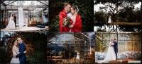 Fotografaia ślubna dla Ciebie!!!