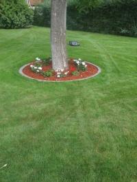 Usługi ogrodnicze, Odśnieżanie, Czyszczenie działek