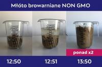 Młóto browarniane suche – wolne od GMO