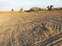 Wilczogóra - decyzja o warunkach zabudowy !!!