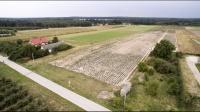 Kępa, ok Lichenia – działki budowlane, bezpośrednio, Video