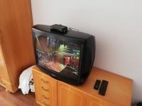 Niezniszczalny telewizor Sony 29 cali!