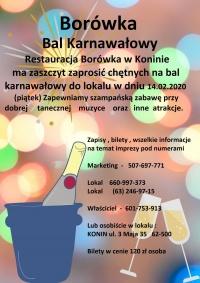 Bal Karnawałowy 2020r. Borówka 14.02.2020r.