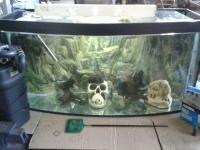 Sprzedam Akwarium Półokrągłe 200 L Kompletne
