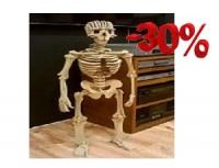 szkielet człowieka - mega puzzle 3D