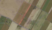 Grunt rolny -  0,56 ha - Dobrosołowo - 36.000 zł do neg.