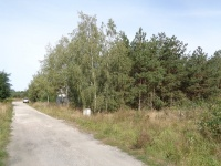 Działka Budowlana – okolice Ślesina - Szyszyńskie Holendry