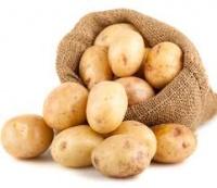 Ziemniaki jadalne LORD