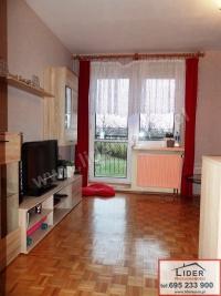 Mieszkanie – parter - 2 pokoje – balkon – ul. Piłsudskiego
