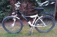 rower Pegasus aluminiowy