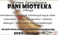Pani Miotełka