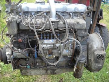 Silnik Leyland SW 400 Fadroma, Bizon