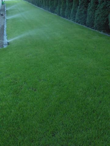 Zakladanie trawników, ogrodów  602 635 026